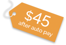 airvoice wireless auto pay save 10%