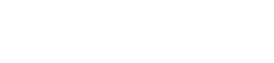 Feelsafe Wireless Logo